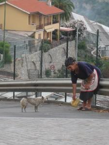 italian lady feeding stray dog