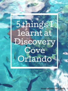 5 things I learnt at Discovery Cove Orlando