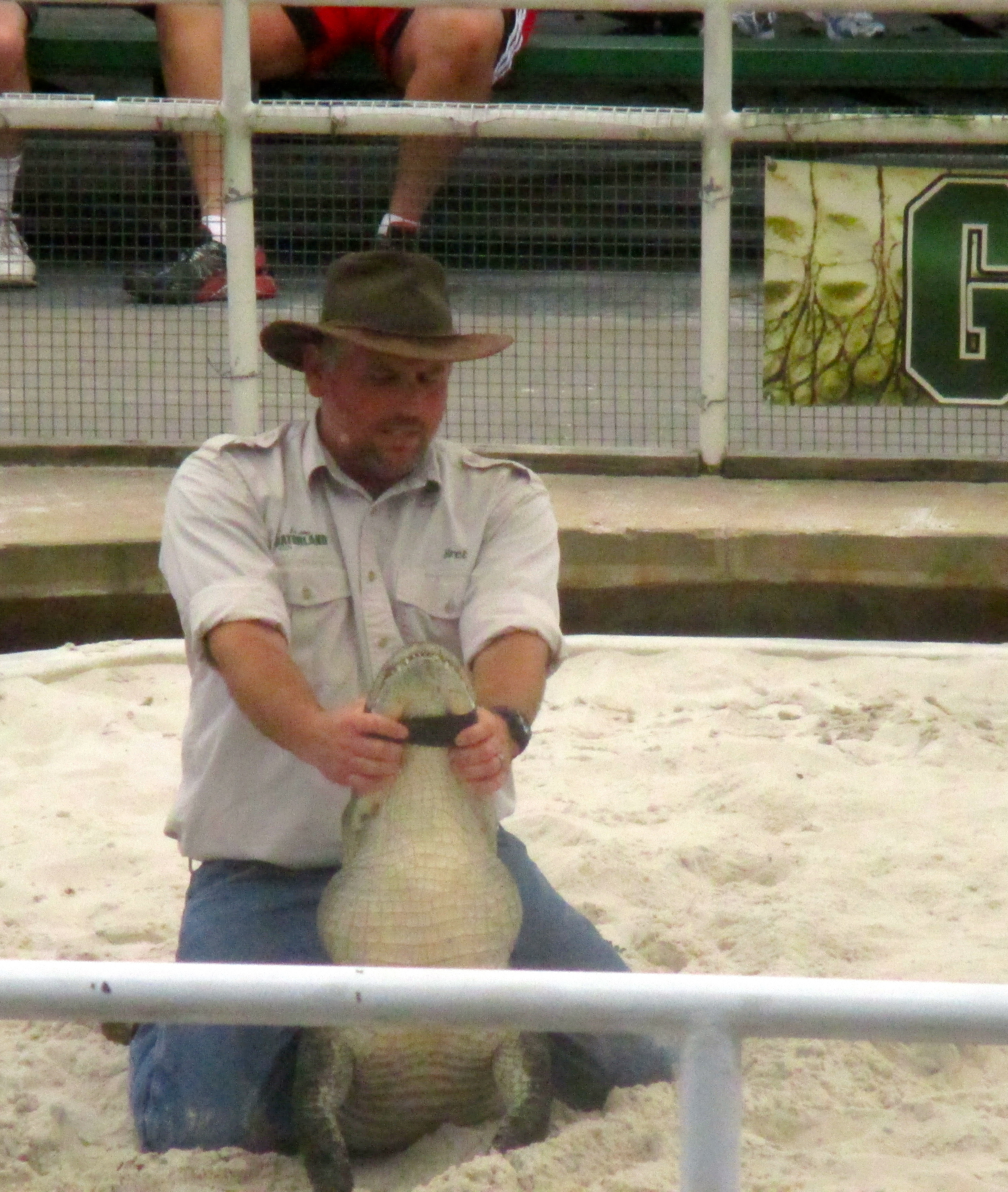 Gator Wrestling show. Copyright Gretta Schifano