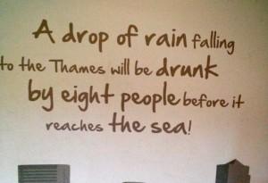 Sign at Sealife London Aquarium. Copyright Gretta Schifano