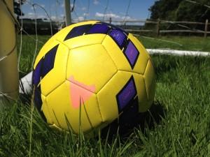 Football in the garden. Copyright Gretta Schifano