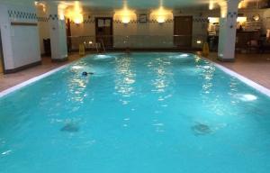Hilton London Metropole pool. Copyright Gretta Schifano