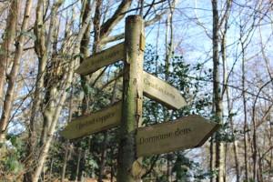 Signpost in the Chartwell woodland. Copyright Gretta Schifano