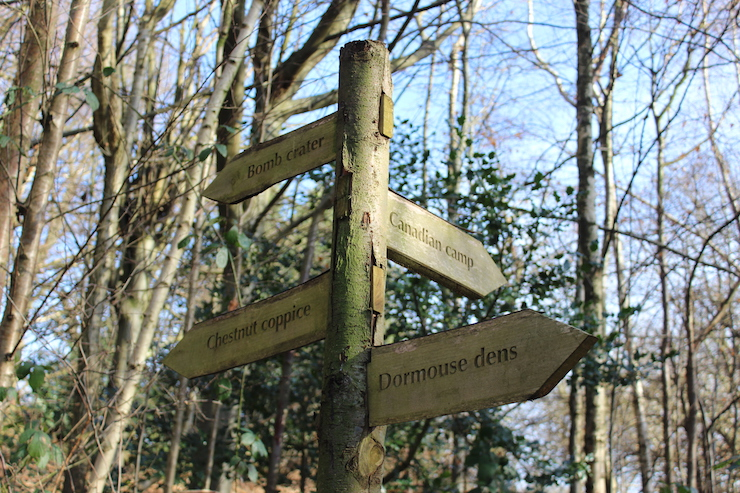 Signpost in the Chartwell woodland. Copyright Gretta Schifano