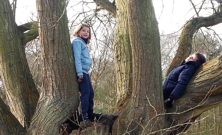 Climbing trees at Kelling Heath Holiday Park. Copyright Lorenza Bacino
