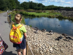 Birdwatching at London Wetland Centre. Copyright Lorenza Bacino