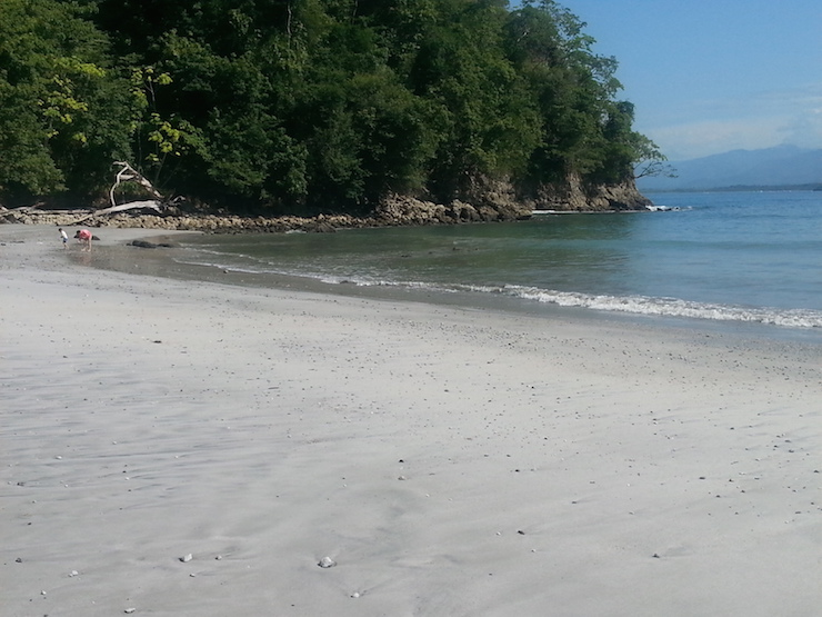 Biestatz beach at Manuel Antonio National Park. Copyright Lorenza Bacino
