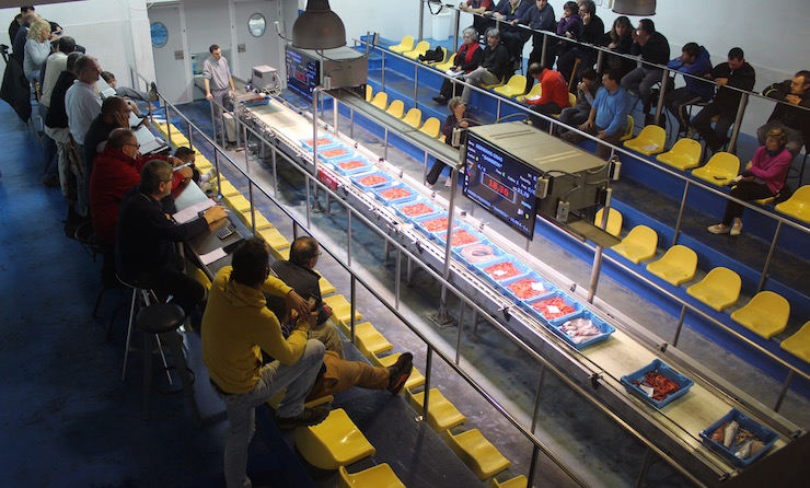 Fish auction at Palamós. Copyright Gretta Schifano