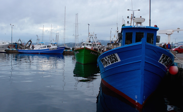 Fishing boats at Palamós. Copyright Gretta Schifano