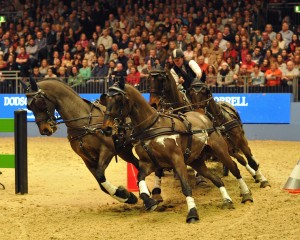 London International Horse Show 2014