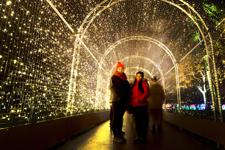 The Pea-light tunnel, Kew. Image courtesy of Kew Gardens