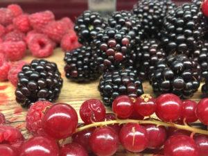 Fruit at Explorers' Outpost Restaurant. Copyright Afra Willmore