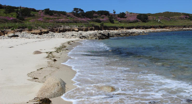 Beach on Tresco, Isles of Scilly. Copyright Gretta Schifano