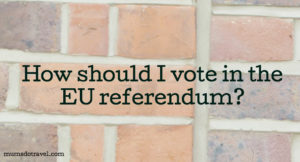 EU referendum question. Copyright Gretta Schifano