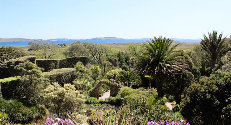 Tresco Abbey Gardens, Isles of Scilly. Copyright Gretta Schifano
