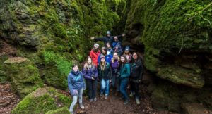 #DeanWyeBloggers at Puzzlewood, Forest of Dean. Copyright David Broadbent