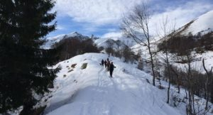 Walking in the Italian Alps. Copyright Gretta Schifano