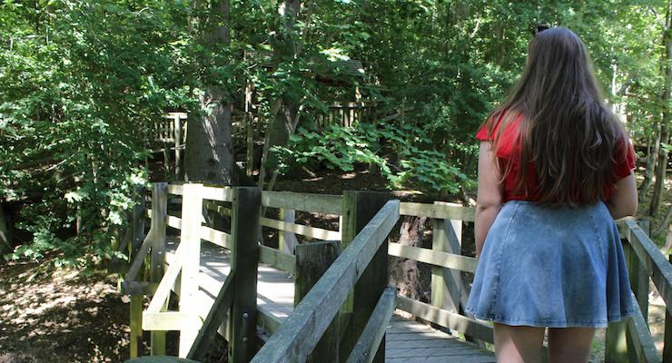 Walking through the forest on the boardwalk, Groombridge Place, Kent. Copyright Gretta Schifano