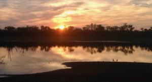 Sunset, Kruger National Park, South Africa. Copyright Lorenza Bacino.jpg