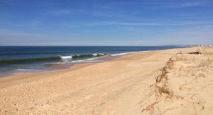 Beach, Faro Island, Ria Formosa, Portugal. Copyright Gretta Schifano