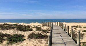 Boardwalk, Faro Island, Ria Formosa, Portugal. Copyright Gretta Schifano