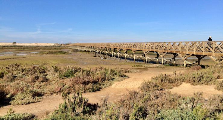 Pedestrian wooden bridge, Ria Formosa, Portugal. Copyright Gretta Schifano