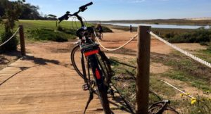 Cycling tour, Ria Formosa nature reserve, Algarve, Portugal. Copyright Gretta Schifano