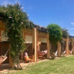 Hammocks at Casa Vale da Lama, Portugal. Copyright Lorenza Bacino