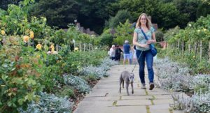 Rose Walk, Chartwell, Kent. Copyright Izzy Schifano