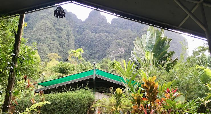 View from our tent front door, Elephant Hills Camp, Khao Sok, Thailand. Copyright Gretta Schifano