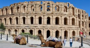 Camels outside El Jem Roman amphitheatre, Tunisia. Copyright Gretta Schifano