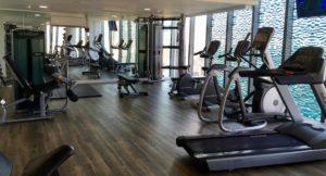 Gym, Radisson Blu Birmingham. Copyright Gretta Schifano