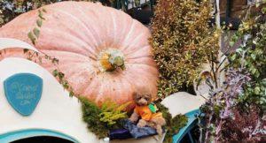 Giant pumpkin, Covent Garden, London. Image courtesy of Capco Covent Garden