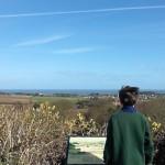 View from Kelling Heath Holiday Park, Norfolk. Copyright Lorenza Bacino