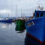 Fishing boats at Palamós. Copyright Gretta Schifano